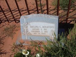 Abelina C. Benavidez