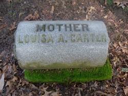 Louiza Ann <I>Uzafovage</I> Carter