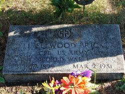 Zell Elwood Bricker