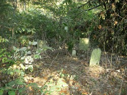 Trout Family Cemetery