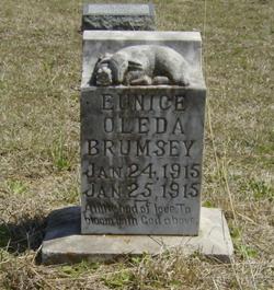 Eunice Oleda Brumsey