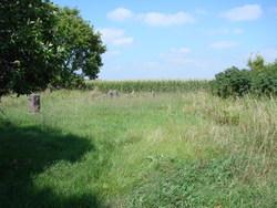 Kilborn Cemetery #3