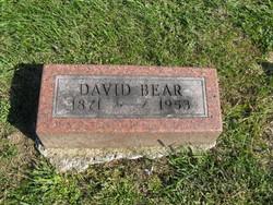 David Bear