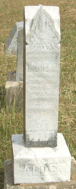Mamie B Allen