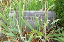 Bertha <I>Meese</I> Henderson