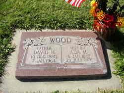 David Hyrum Wood