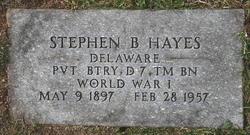 Stephen B Hayes