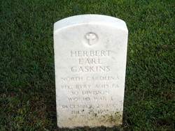 Herbert Earl Gaskins, Sr