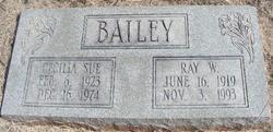 Ray W. Bailey