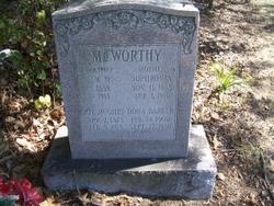William M McWorthy