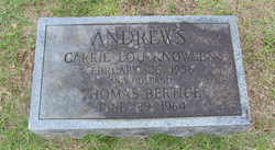 Carrie Lou <I>Knowles</I> Andrews