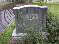 Mary E Iliff
