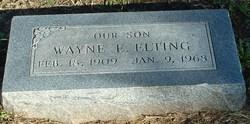 Wayne E. Elting