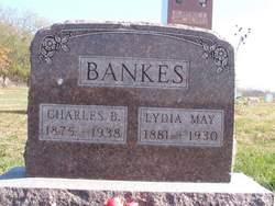Lydia May <I>McKinley</I> Bankes