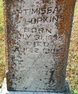 Artimissa <I>Whitfield</I> Hopkins