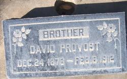 David William Provost