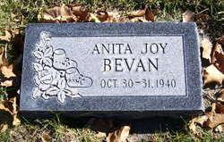 Anita Joy Bevan
