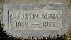Augustin Adams