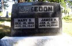 James H Breedon