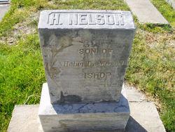 Heber Nelson Bishop