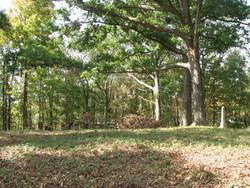 Adams Cemetery #2