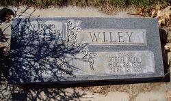 Rudgar D Wiley