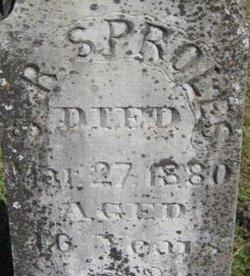 Stephen R. Sproles