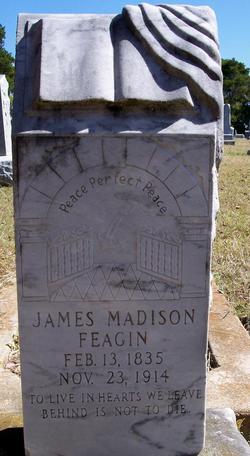 James Madison Feagin