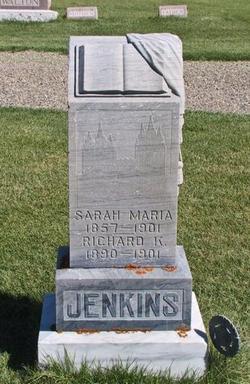 Sarah Maria <I>Kimball</I> Jenkins