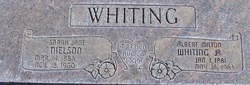 Sarah Jane <I>Nielson</I> Whiting