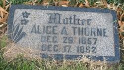 Alice <I>Armitstead</I> Thorne