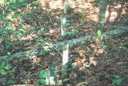 Mint Spring Cemetery