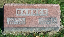Thomas Allen Barnes