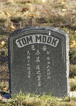 Tom Mook