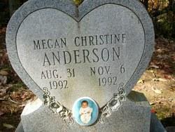 Megan Christine Anderson
