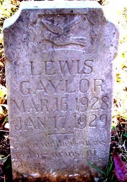 Lewis Gaylor