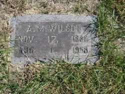 """Armilous M. """"A.M."""" Wilson"""