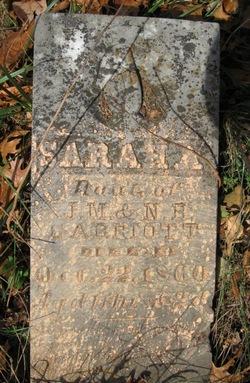Sarah A Garriott