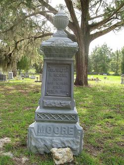 Col Walter Raleigh Moore