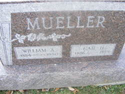 Gail Hamilton <I>Hawk</I> Mueller