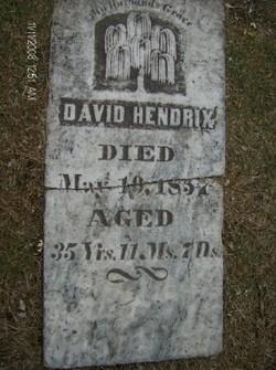 David S Hendricks