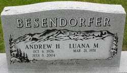 Andrew Harold Besendorfer