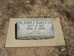 Almira Iona <I>Pulsipher</I> Burgess