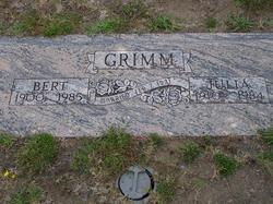 Bertram Cecil Grimm