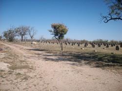 Abilene State School Cemetery