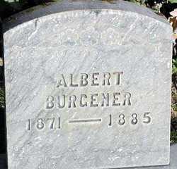 Albert Burgener