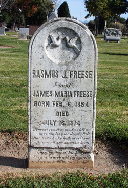 Rasmus J Freese