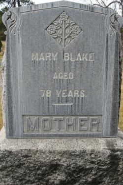Mary Lark <I>Use</I> Blake