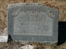 Louis Schneider