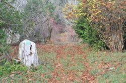 Tidewater Cemetery